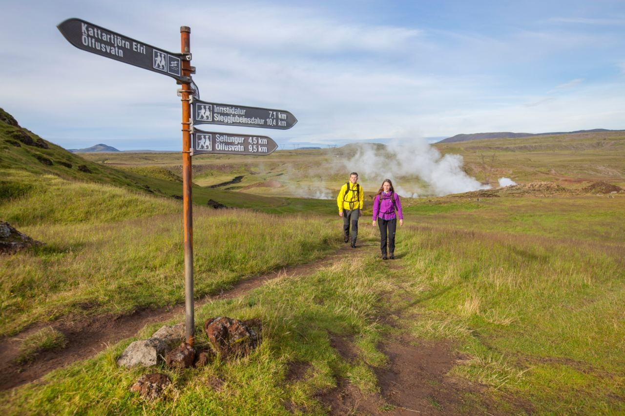 Hiking Day Tour to Reykjadalur