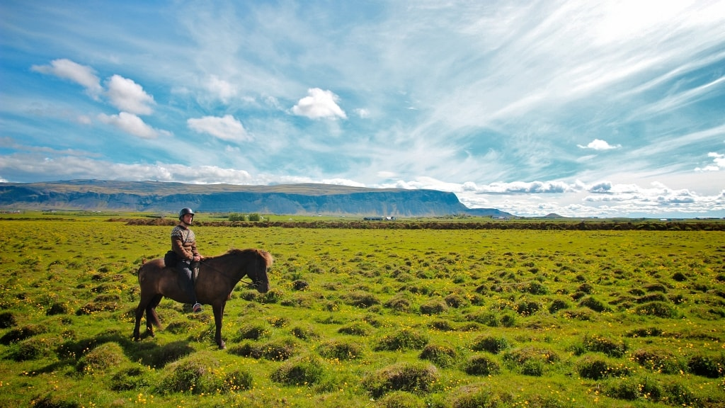 A rider on an Icelandic horse